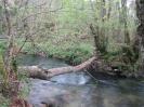 Ruta Río Liñares - 30/03/2014